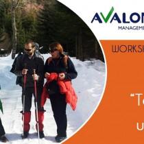 Workshop – Managementul echipei