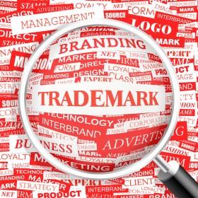 Cristiana Deca, Decalex Legal Solutions: Marca este cel mai de pret activ al unei afaceri