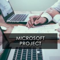 Curs  intensiv Microsoft Project