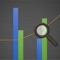 Auditul intern – o abordare practică