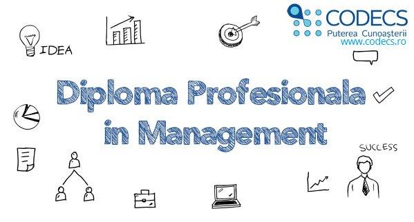 Alege calea spre un management de succes | Diploma Profesionala in Management