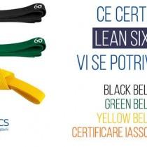 Certificare Lean Six Sigma | CODECS